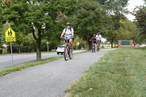 Picture - People Biking