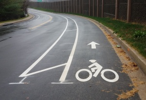 buffered-bike-lane-shaker-drive-cropped